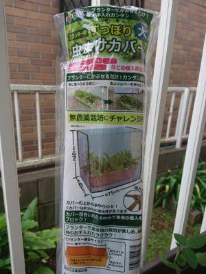 枝豆をカメムシ被害から守る。第一ビニール プランター用 すっぽり 虫よけ カバー 大